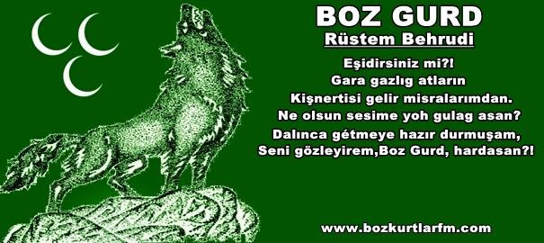 Boz Gurd – Rüstem Behrudi Şiiri