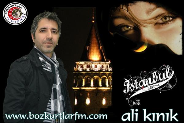 ali_kinik_2013_005