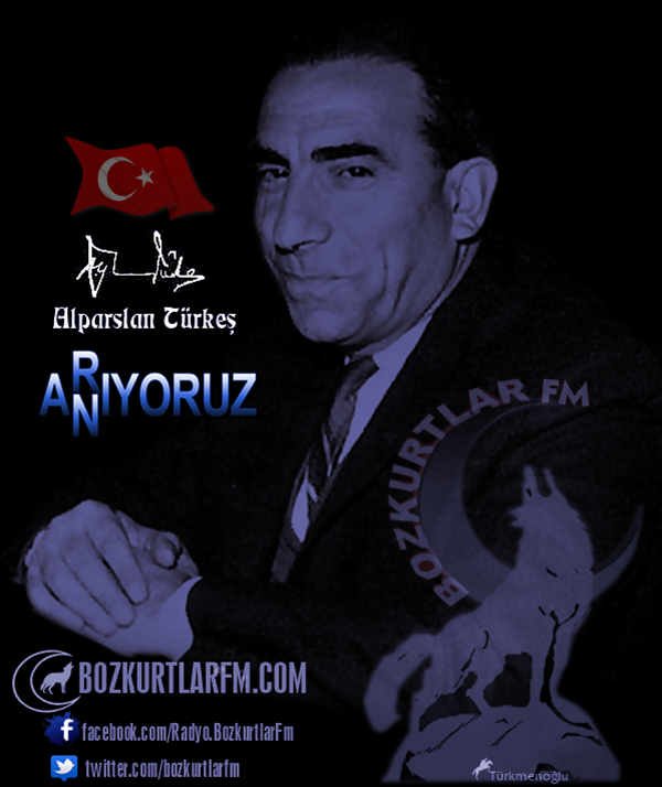 alparslan-turkes-resim-2016-3