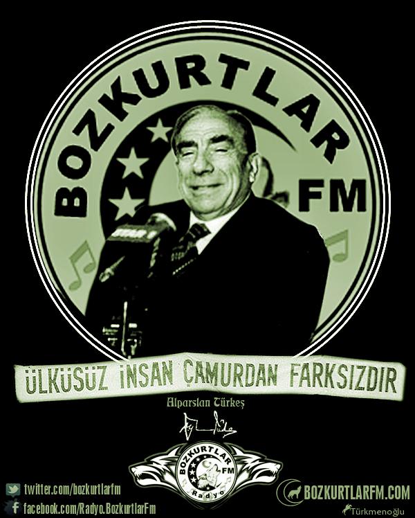 alparslan-turkes-resim-2016-basbug-1
