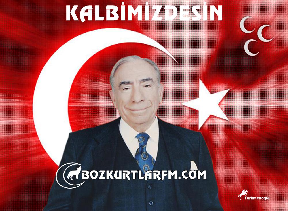 Başbuğ Alparslan Türkeş Resimleri – 2012