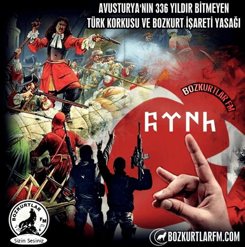 Avusturya'nın 336 Yıldır Bitmeyen TÜRK Korkusu ve Bozkurt İşareti Yasağı
