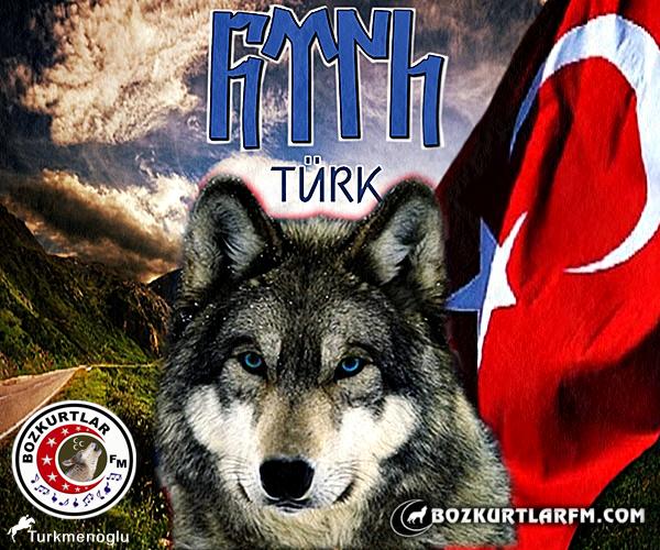 bozkurt_turk_bayragi_gokturk