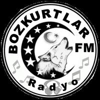 bozkurtlar_fm_alt_logo_2014_turksitan
