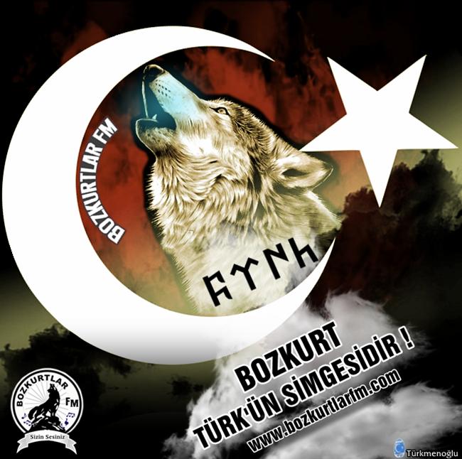 Bozkurt Resimleri – Bozkurt Türk'ün Simgesidir