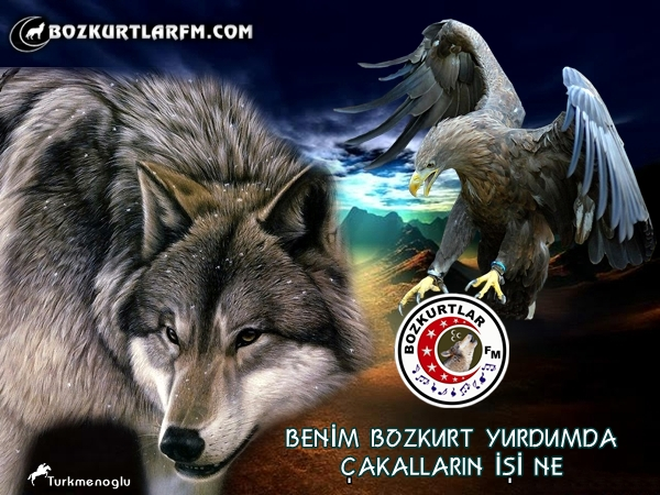 kartal_bozkurt_2