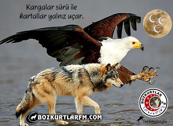 kartallar_yalniz_ucar