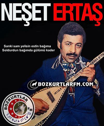 neset_ertas_resim_014_2013