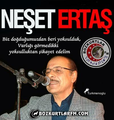 neset_ertas_resim_2013_01