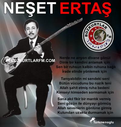 neset_ertas_resim_2013_4