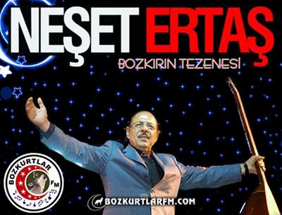 neset_ertas_resim_2013_5