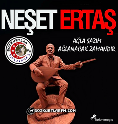 neset_ertas_resim_2013_7