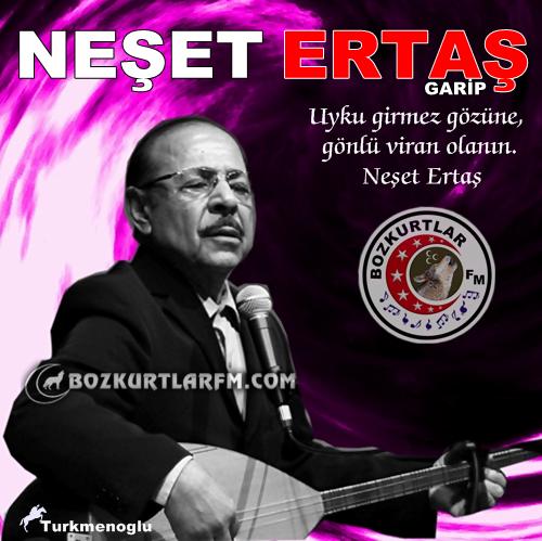 neset_ertas_resim_resim_02