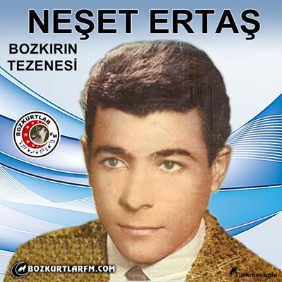 neset_ertas_resimleri_9