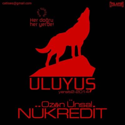 ozan_unsal_uluyus_albumu_2014